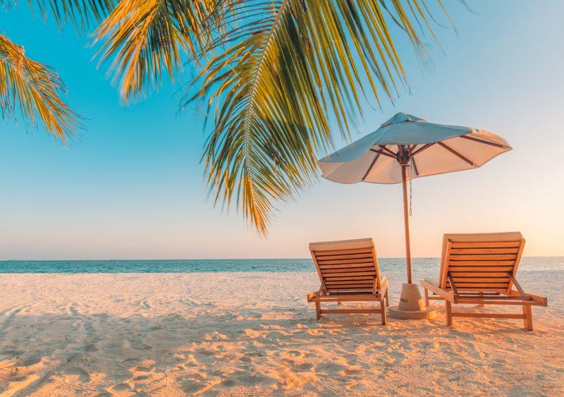 Waarom kiezen steeds meer mensen in de zomer voor een Vlieland vakantie?